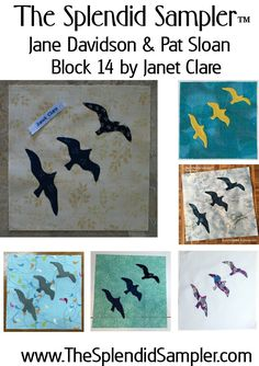 14 Splendid Sampler Janet Clare Block multi