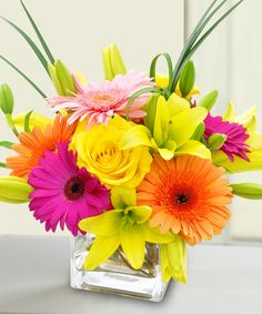 Bursting with vibrant hued Gerbera daisies and yellow roses, this cube will brighten anyones day and remind them that you care!