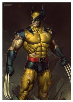 Wolverine Rcb 2 by alex-malveda on DeviantArt Wolverine Comics, Logan Wolverine, Marvel Comics Superheroes, Marvel Art, Marvel Heroes, Wolverine Tattoo, Comic Book Characters, Comic Book Heroes, Marvel Characters
