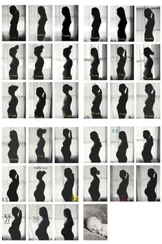 weekly silhouette pictures....love the simplicity!