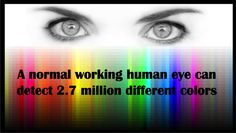 Colors a human eye can detect... Our Did You Know series is not a quiz, or a test, it is just a fun fact of the day spruced up with high quality graphics. http://www.scientificanimations.com/did_you_know/colors-human-eye-can-detect/ #ScientificAnimations #DidYouKnow #ThursdayDidYouKnow #Colors #Eye