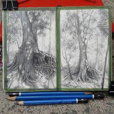"Mi libreta para árboles. Lidia Barragán. ( Moleskine 9 x 14 cm - 3 1/2"" x 5 1/2"" ) #moleskine #sketch #tree #drawings #graphite"