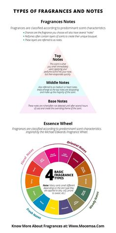 Things You Should Know About Different Types Of Fragrance Notes Perfume Scents, Perfume Fragrance, Fragrance Mist, Perfume Quotes, Homemade Perfume, Diy Beauté, Perfume Recipes, Essential Oils Guide, Hermes Perfume