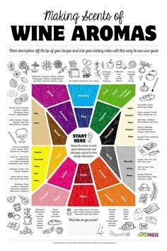 Infografia sobre #aromas del #vino
