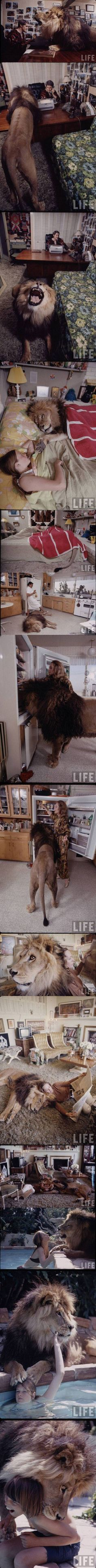 Tippi Hedren and family at home (including daughter Melanie Griffith and a pet lion)