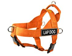 Dean  Tyler DT Universal No Pull Dog Harness with Lap Dog Patches Medium Orange ** Check this awesome product by going to the link at the image. (This is an affiliate link)