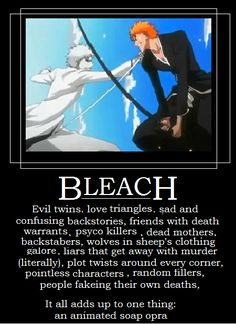 The truth about Bleach