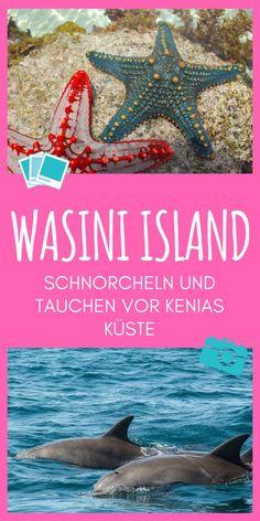 Safari, Kenya Travel, Beste Hotels, Travel Agency, Beautiful Islands, Have Fun, World, Snorkeling, The World