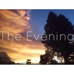The evening #nature #evening #tree #sky