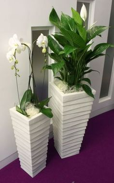Bring peace to your home with the peace lily - living ideas and decoration- Bringen Sie Frieden in Ihr Zuhause mit der Friedenslilie – Wohnideen und Dekoration Peace lily and orchid - Peace Lily, Artificial Plant Wall, Artificial Flowers, Decoration Plante, House Plants Decor, Deco Floral, Interior Plants, Interior Design, Cool Plants