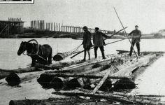 Jewish riverbank workers take apart a raft of lumber. Pinsk, December 7, 1924.