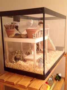 DIY Hamster House Hey Pet Parents and Hamster Lovers. Do you want to build a great hamster house for your hammy, but you do not have the DIY skills to … How To Make A Durable, but Cheap Hamster house READ Diy Hamster House, Cool Hamster Cages, Gerbil Cages, Hamster Habitat, Hamster Life, Hamster Stuff, Hampster Cage, Hedgehog Habitat, Chinchillas
