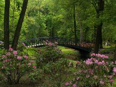 Szczytnicki Park - Wrocław, Poland