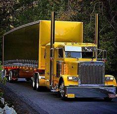 TruckerBitch602