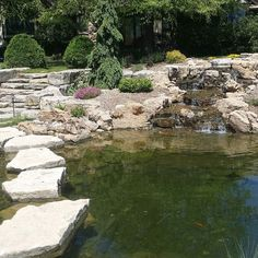 Come walk with me over the #pond.  Have a seat and dip your toes in the water.  #koi #pondsquad # waterlily #stone