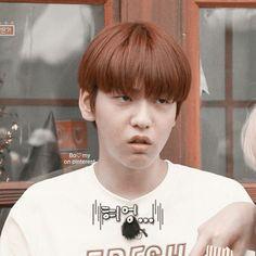 Icon by Bomy Korean Babies, Cat Dog, Together Forever, Boyfriend Material, Kpop, Memes, Cute, Kawaii, Jokes