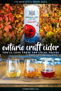 Ontario cider is booming across the province! Enjoy a taste of fall all year round at these incredible Ontario craft cider establishments. Toronto, Canada Travel, Travel Usa, Beach Travel, Quebec, Montreal, Vancouver, Travel Guides, Travel Tips