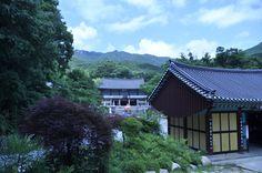 대구 동화사..20130626