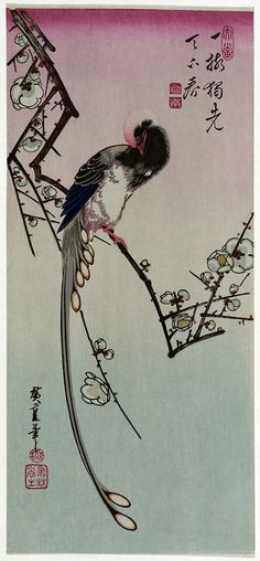 Plum Blossom and Magpie ( circa 1830 - 1858). Woodblock print by Hiroshige (1797-1858). http://www.loc.gov/exhibits/ukiyo-e/ Wikimedia.