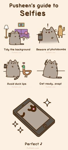 Pusheen the Cat's guide to selfies [GIF]