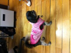 Our fashionista Daisy