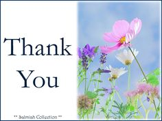 Thank You Card 34