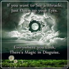 Magic everywhere!