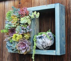 Mini Shelf Vertical planter Succulent di SucculentWonderland