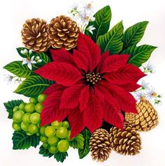 Poinsettia with grapes and pine-cones --by Elena Vladykina