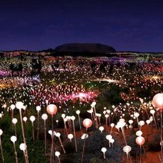 Bruce Munro - Field of Light, Ayers Rock, Australia