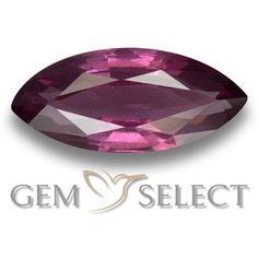 GemSelect features this natural untreated Rhodolite Garnet from Mozambique. This Red Rhodolite Garnet weighs 1.3ct and measures 10.4 x 4.6mm in size. More Marquise Facet Rhodolite Garnet is available on gemselect.com #birthstones #healing #jewelrystone #loosegemstones #buygems #gemstonelover #naturalgemstone #coloredgemstones #gemstones #gem #gems #gemselect #sale #shopping #gemshopping #naturalrhodolitegarnet #rhodolitegarnet #redrhodolitegarnet #marquisegem #marquisegems #redgem #red
