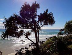 Visitar Gold Coast: Kirra Beach