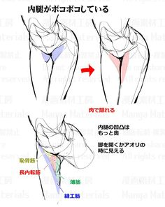 Body Reference Drawing, Body Drawing, Drawing Reference Poses, Anatomy Reference, Drawing Poses, Female Drawing, Anatomy Sketches, Anatomy Drawing, Anatomy Art