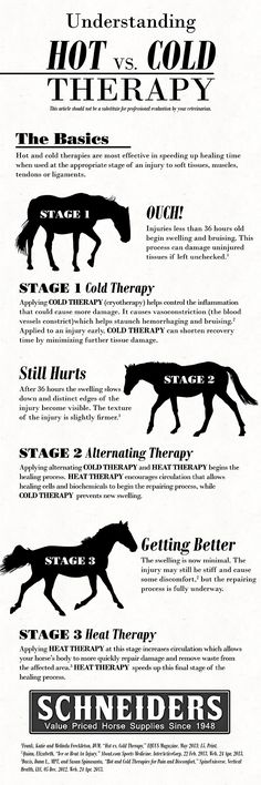Infographic on hot vs. cold therapy for injuries (when to use each).  Great info to laminate and keep in the tackroom.  #horses #equestrian #firstaid