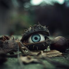 Creepy idea - put fake eyes in unusual places.