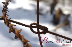 Butler & Sons Design - Customer Artwork and Photography; crown of thorns; religious; faith; barbed wire; struggle