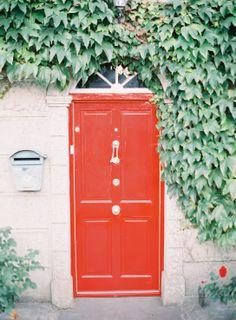 red door | green ivy | jen huang photo