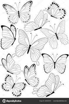 Butterfly Sketch, Butterfly Clip Art, Butterfly Illustration, Butterfly Tattoo Designs, Butterfly Black And White, Desenho Tattoo, Art Journal Techniques, Tattoo Stencils, Flash Art