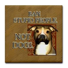 Say no to Breed Specific Legislation (BSL) sign this petition to show your support  https://petitions.whitehouse.gov/petition/repeal-all-breed-bans-nationwide-and-ban-breed-selective-legislation/YDB831tT