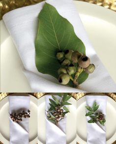 Searching for a stylish themed napkin alternative this Australia Day from the humble Australian Flag or Green and Gold options widely available? The solution is closer then you think and can be found in your very own garden or local park lands.