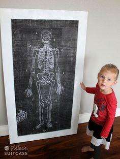 My Sister's Suitcase: Mr. Bones {Magnetic Skeleton for Kids}