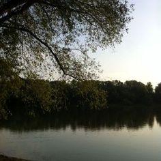 Rijeka Drava (6)