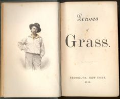 leaves of grass - Google Search