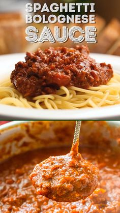 This Easy Spaghetti Bolognese Sauce Recipe is a simple take on an authentic and traditional Italian meal. Loaded with ground beef and spices and laced with Merlot wine, this quick tomato-based sauce is bound to be a wholesome family favorite. Ragout Bolognese, Pasta Bolognese, Simple Spaghetti Bolognese, Easy Beef Bolognese Recipe, Meatballs For Spaghetti, Best Spaghetti Bolognese Recipe, Turkey Spaghetti, Vegetarian Spaghetti, Vegetarian Italian
