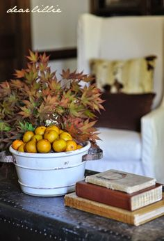Dear Lillie: Adding Some Early Autumn Touches to Our Den/Study