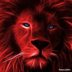 Love this purple lion Purple Love, All Things Purple, Shades Of Purple, Purple And Black, Purple Stuff, Lion Spirit Animal, Double Exposition, Purple Animals, Power Animal