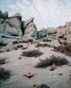 Cody Cobb Sierra Nevada photography (8) • DESIGN. / VISUAL.
