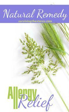 Top 5 Natural Remedies For Seasonal Allergies
