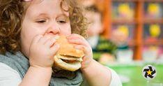 #Diputado pide ya no incluir juguetes en alimentos no saludables - Multimedios Laguna: Multimedios Laguna Diputado pide ya no incluir…