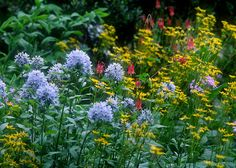 Simple Tips for Creating a Pollinator-Friendly Landscape by Annie S. White A landscape rich with a diversity of flowering plants is both beautiful and helps support the thousands of species of bees…